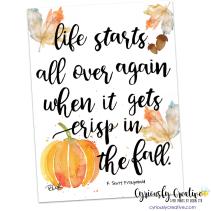 Fall - Fitzgerald